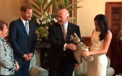 Принца Гарри и супругу поздравили в Австралии с ожиданием ребенка - (видео)