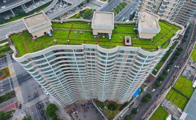 Реновация: Вырубив парки, мэрия посеет травку на крышах - «Недвижимость»