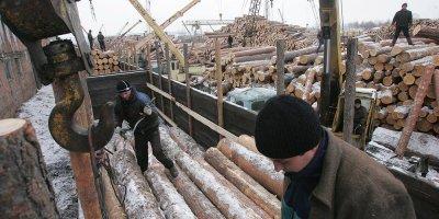 У Медведева спросили про вывоз леса в Китай