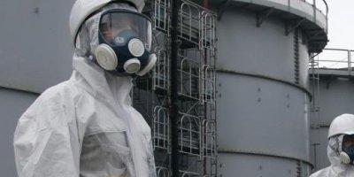 Эксперты подтвердили, что в Приморье будут перерабатывать только региональные радиоактивные отходы