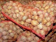Похитителя картошки в Сыктывкаре нашли по оставленному в сугробе отпечатку номера машины - «Автоновости»