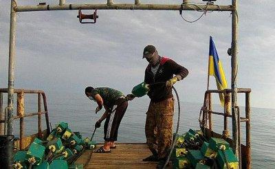 Керченский пролив: Украинских «Кентавров» встретит не флот, а «Татарская петля» - «Общество»