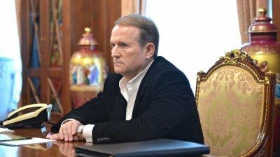 Медведчук попросил Медведева удешевить цену на газ для Украины, возобновив прямой транзит - «Новороссия»