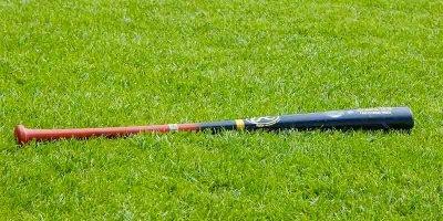 На Алтае депутат забил бейсбольной битой своего работника