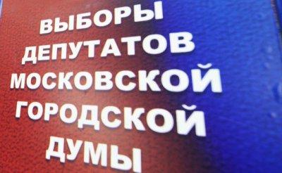 Анастасия Удальцова: «Наша задача — рассказывать о «самомедвеженцах» - «Политика»