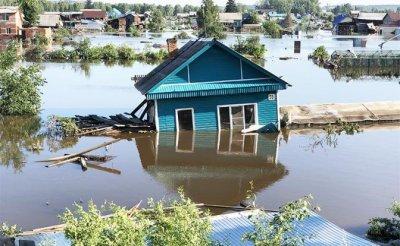 Аномальное лето-2019: Сибирь утонула, Волга засохла, власть бездействует - «Происшествия»