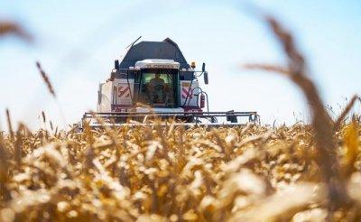 Урожай-2019: США рано радуются тому, что Россия осталась без хлеба - «Экономика»