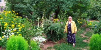 Волгоградские власти хотят наказать пенсионерку на 50 тысяч за цветущий сад под окном