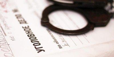 На упавшего с сыном на плечах москвича завели уголовное дело