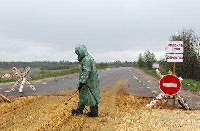 НМ ДНР: ВСУ в Донбассе спровоцировали вспышку чумы - «Новороссия»