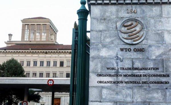 За что боролись: Россия разочаровалась в ВТО - «Экономика»