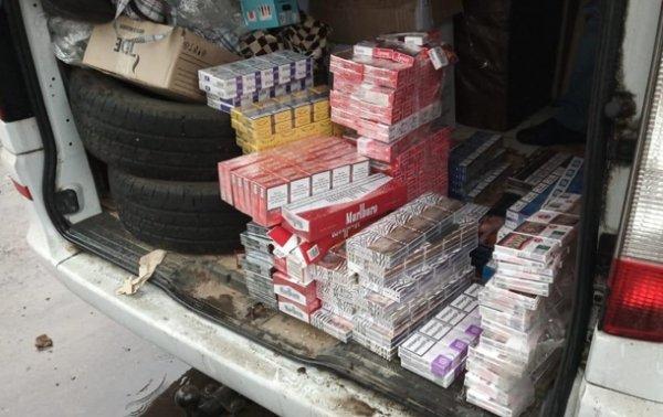 Пограничники выявили 13 точек накопления контрафактных сигарет - (видео)
