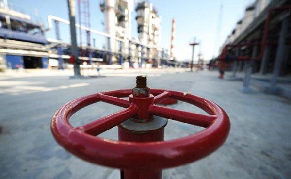 Транзит газа: Украина вынудила Европу составить «карту страха» - «Экономика»
