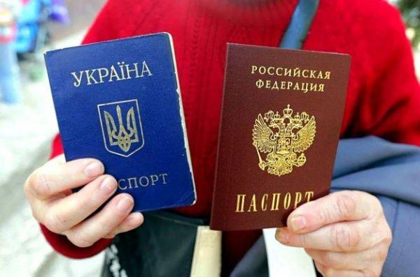 Почти 300 тыс. граждан Украины получили паспорта РФ в 2019 году - «Новороссия»