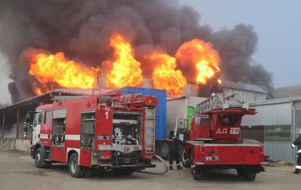 Под Днепром пожар уничтожил склад автозапчастей - (видео)